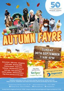 Autumn Fayre @ Bransby Horses  | Bransby | England | United Kingdom