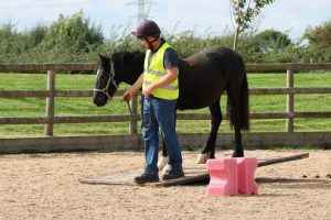 'Five Freedoms' Trail & Peter Hunt Handling Yard 'Confidence Building' talk/demo @ Bransby Horses  | Bransby | England | United Kingdom