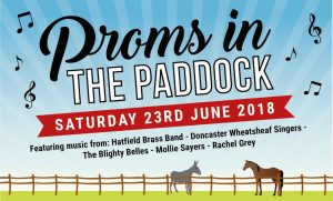 Proms in the Paddock @ Bransby Horses  | Bransby | England | United Kingdom