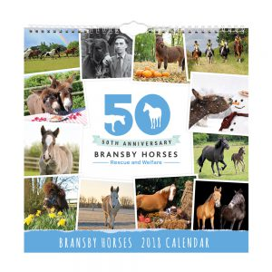 Bransby Horses 2018 Calendar