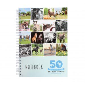 SS18-Notebook