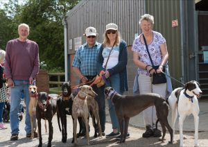 'Five Freedoms' Trail & Paws Meet Ponies @ Bransby Horses  | Bransby | England | United Kingdom