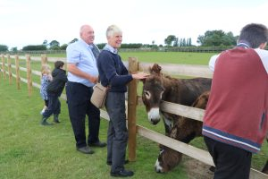 Donkey Pat and Chat @ Bransby Horses   Bransby   England   United Kingdom