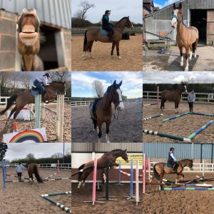 Collage of charlie, jumping etc