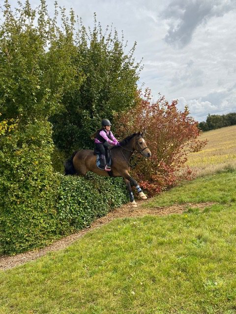 Ben jumping bush