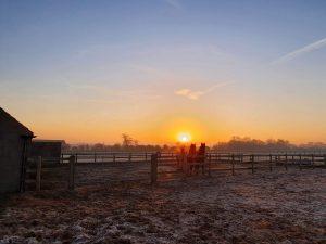 Peter Hunt sunset