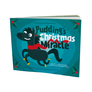 Bransby Horses Christmas story