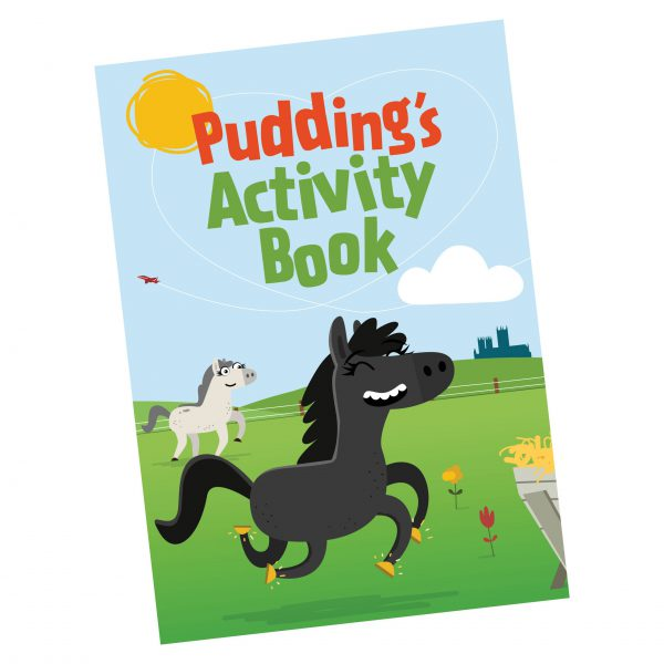Pudding's Activity Book for kids!