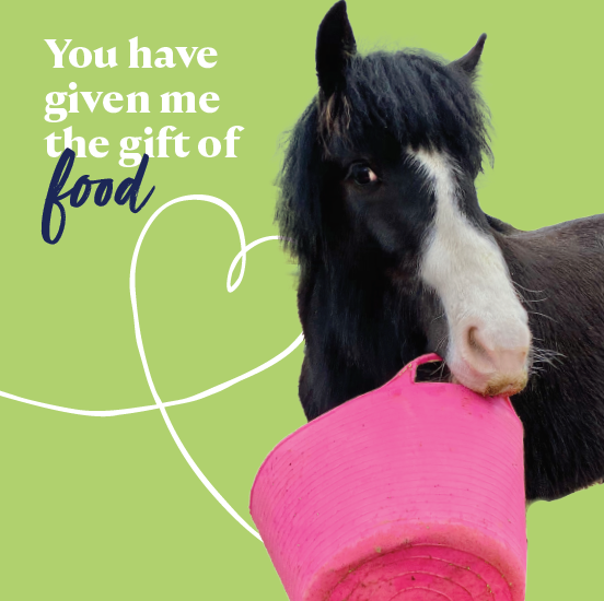 Gift of food