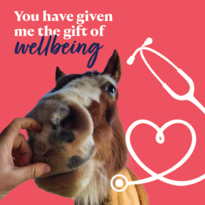Gift of wellbeing