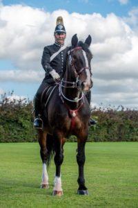 Police Horse Captain